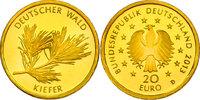 """20 Euro 2013 D Deutschland Serie """"Deutscher Wald"""" - Kiefer pp.  198.26 £ 230,00 EUR  +  8.53 £ shipping"""