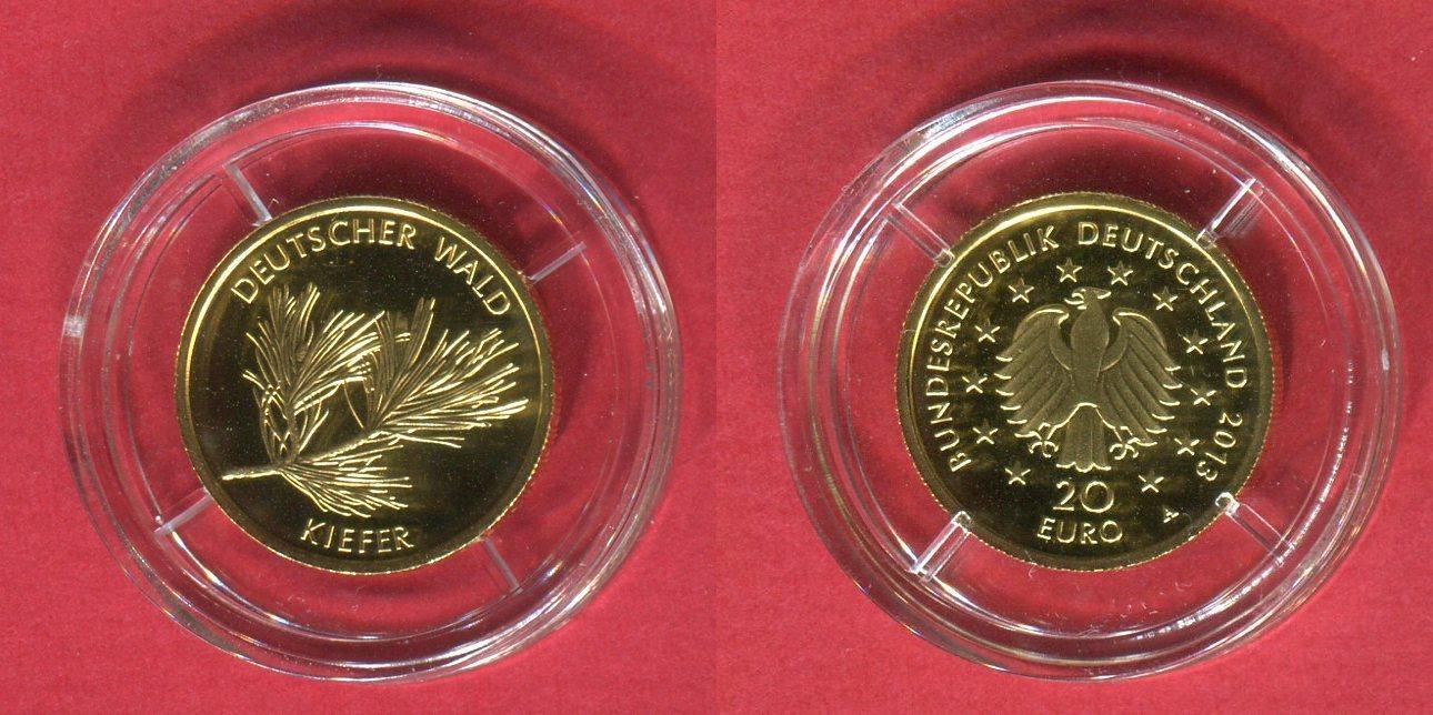 20 Euro Goldmünze 18 Unze Gold 2013 A Deutschland Brd Deutscher